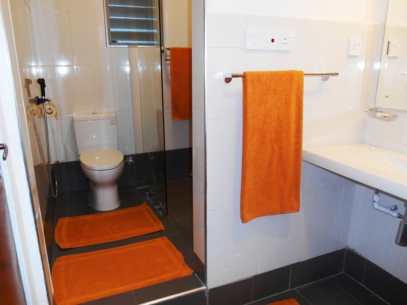 1 Br Apartment  2-4 in Central Location near the Vihara Maha Devi Park - Colombo 2